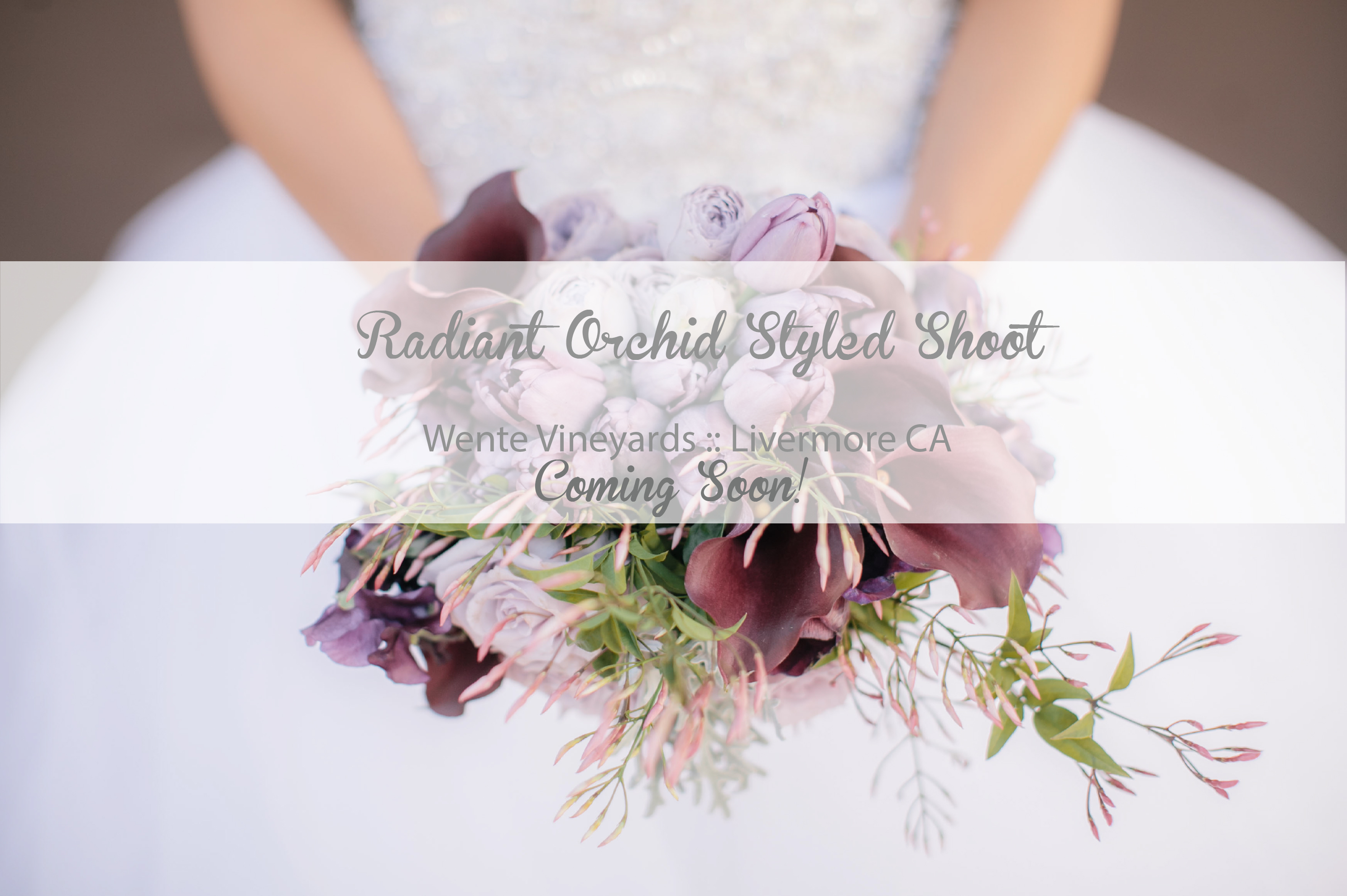 Creative Flow Co :: Radian Orchid Wedding Inspiration Styled Shoot :: Oakland Wedding Planner